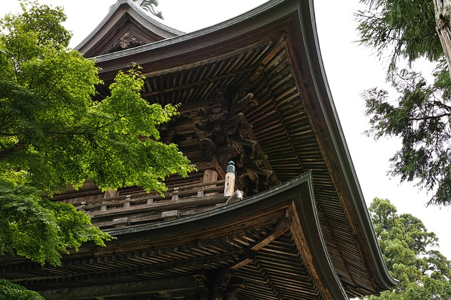 鎌倉の老舗おすすめスイーツを食べ歩き!どらやき専門~せんべい屋さんまで