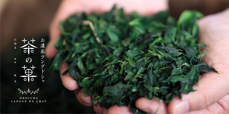京都マールブランシュの本格派抹茶スイーツの魅力について。