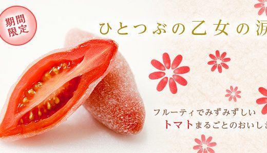 【広島】共楽堂の乙女の涙を食べた感想。人気の商品も一挙紹介!